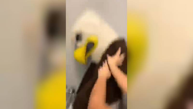Two Lexington private schools are investigating a video. The video appears to show Lexington...