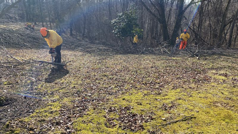 Kentucky Baptist Relief has crews all over southern Lincoln County Friday where the ice storm...