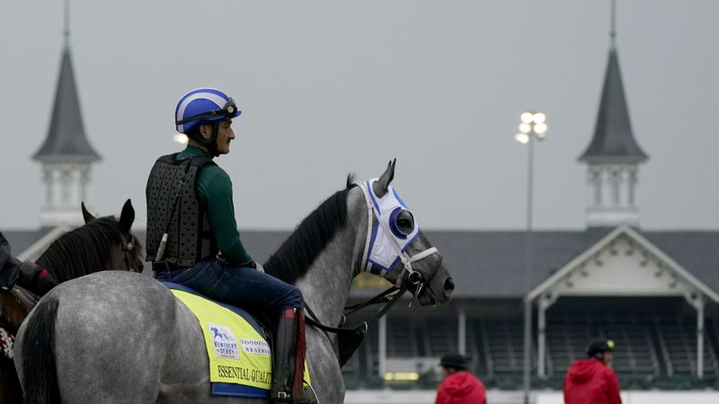 Kentucky Derby entrant Essential Quality waits to work out at Churchill Downs Thursday, April...