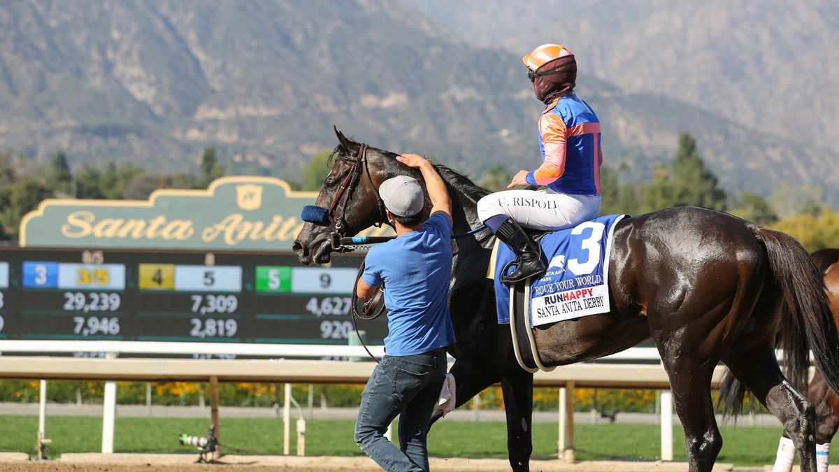Rock Your World wins the Santa Anita Derby.