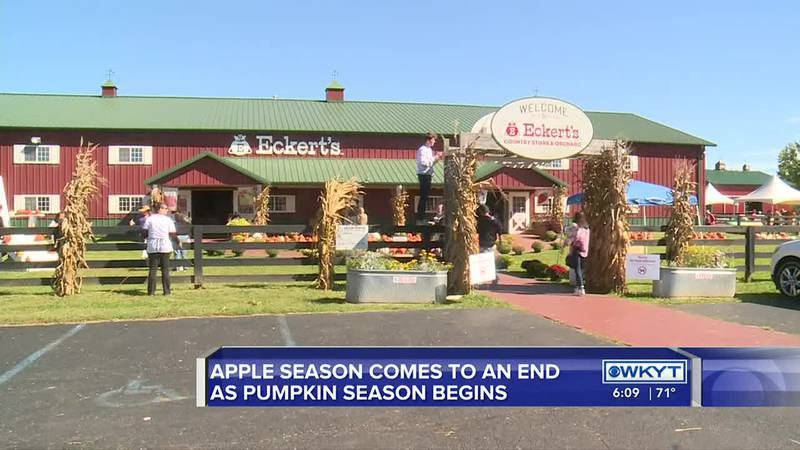 Cars filled the parking lot as people lined up to enjoy fall festivities at Eckert's Orchard...