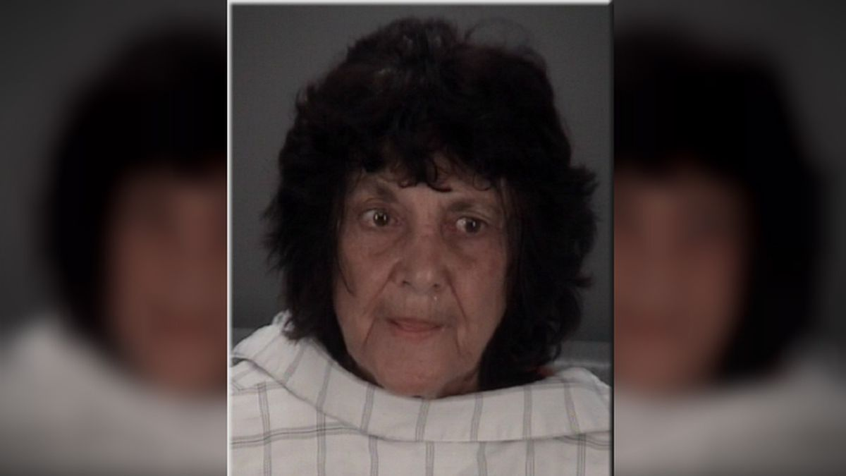Seventy-seven-year-old Jane Galitello was charged after her boyfriend told deputies she attacked him with a metal detector for watching porn. (Source: Pasco County Sheriff's Office)