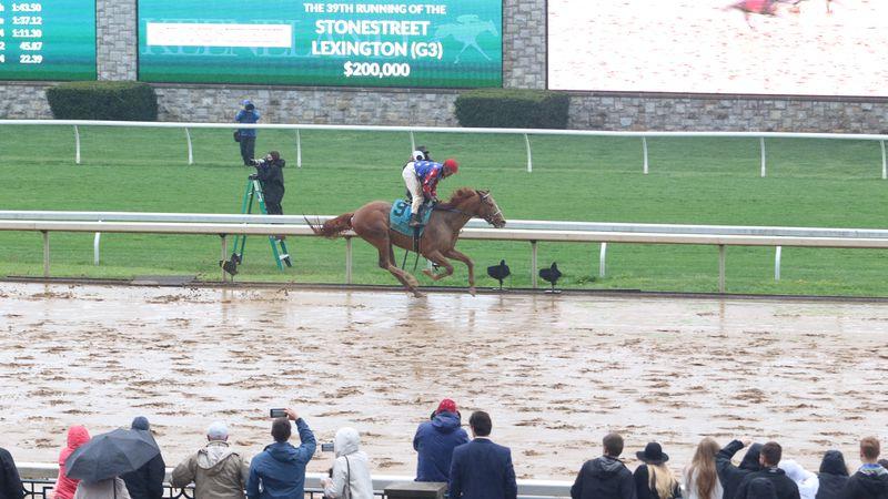 King Fury wins the Lexington Stakes.