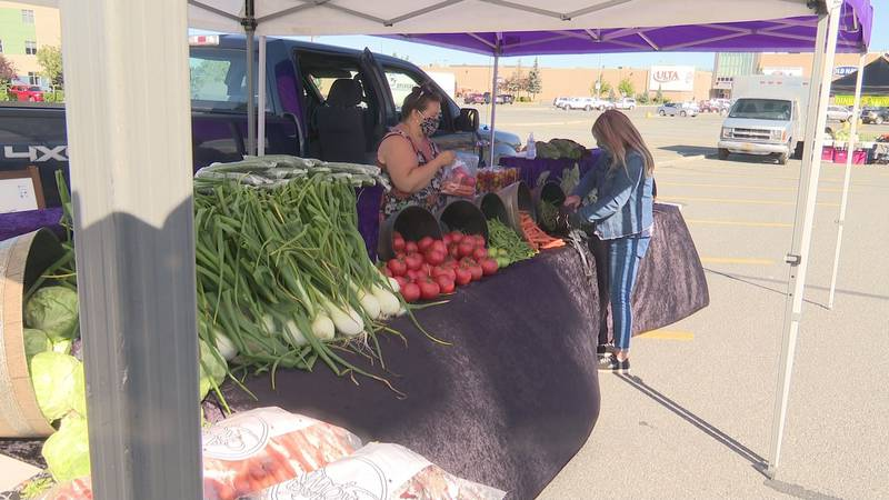 The first full week of August marks National Farmers Market Week in America. (File image)