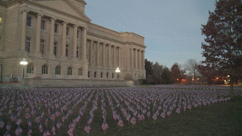 The flags on the Capitol lawn represent everyone who has died from COVID-19.