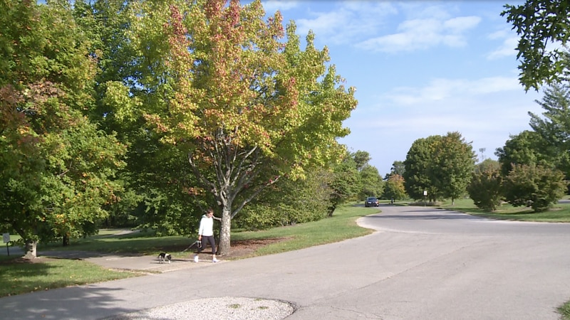 It's fall in Kentucky and soon our trees all over the region will be changing colors, but...