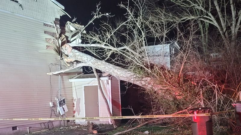 A tree fell onto a home in Georgetown early Friday morning.