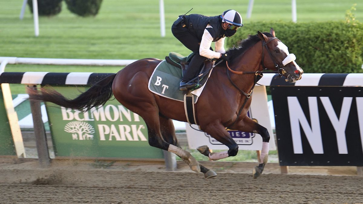 In this Sunday, June 14, 2020, photo provided by Coglianese Photos, Tiz The Law trains at Belmont Park in Elmont, N.Y. Tiz the Law looks every bit like the best 3-year-old in the world and is the Triple Crown favorite, so it'll take something spectacular from a watered-down field to prevent him from becoming the first New York-bred horse to win the Belmont in over 130 years and take a powerful stride toward the Kentucky Derby.(Susie Raisher/Coglianese Photos via AP)