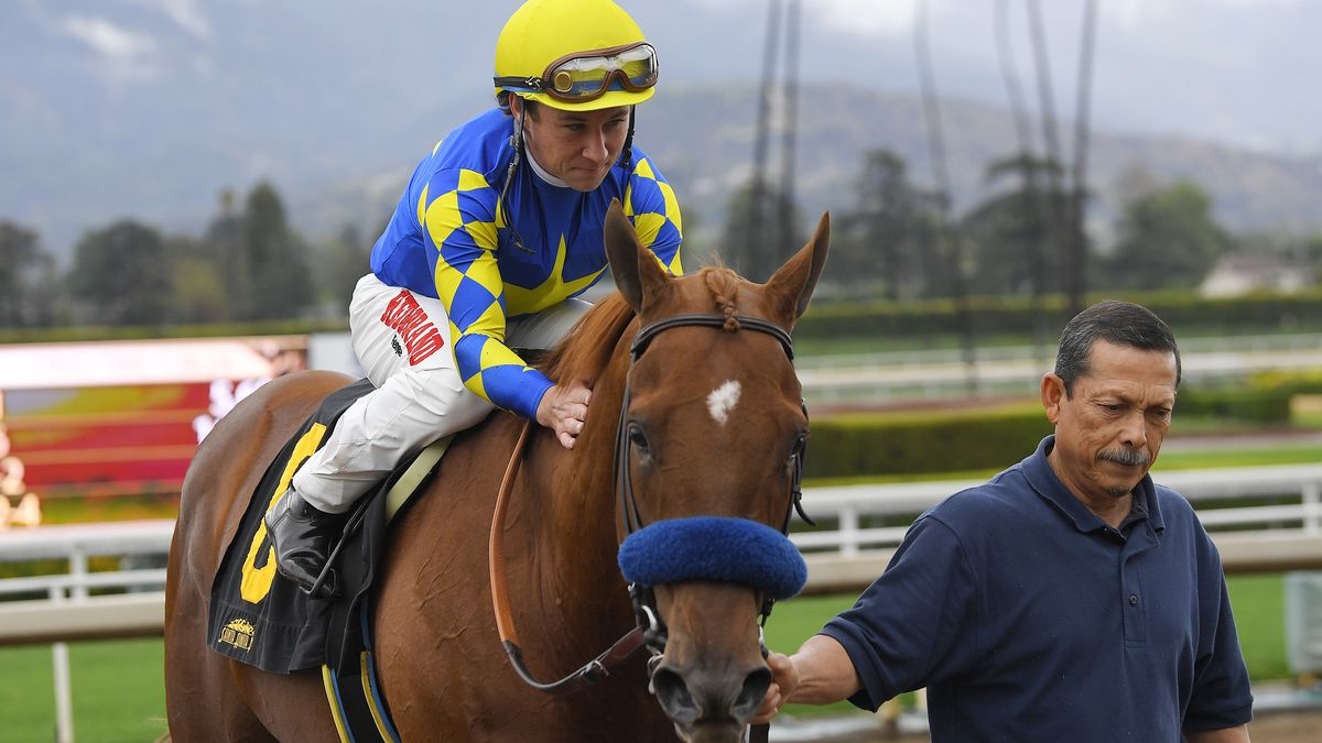 Drayden Van Dyke, top, pats Charlatan after winning the sixth race at Santa Anita Park, Saturday, March 14, 2020, in Arcadia, Calif. While most of the sports world is idled by the coronavirus pandemic, horse racing runs on. (AP Photo/Mark J. Terrill)