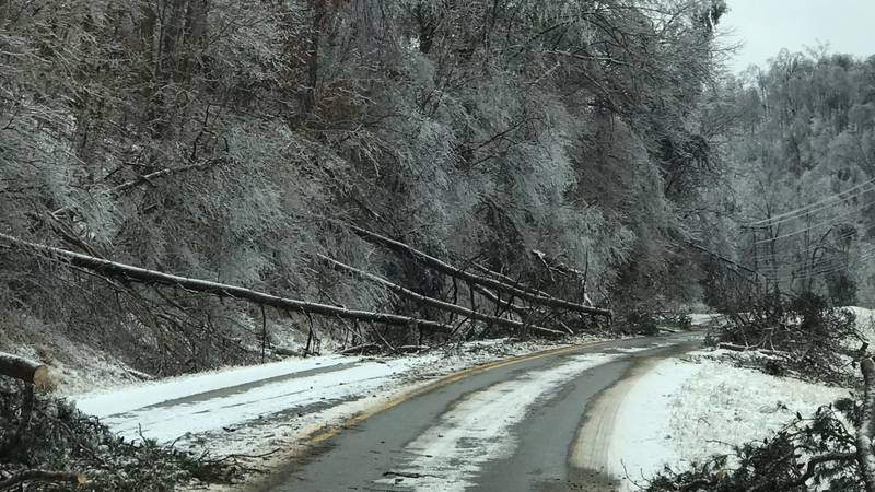Heavy snow and ice has caused trees to fall on houses, power lines and roads all over Boyd...