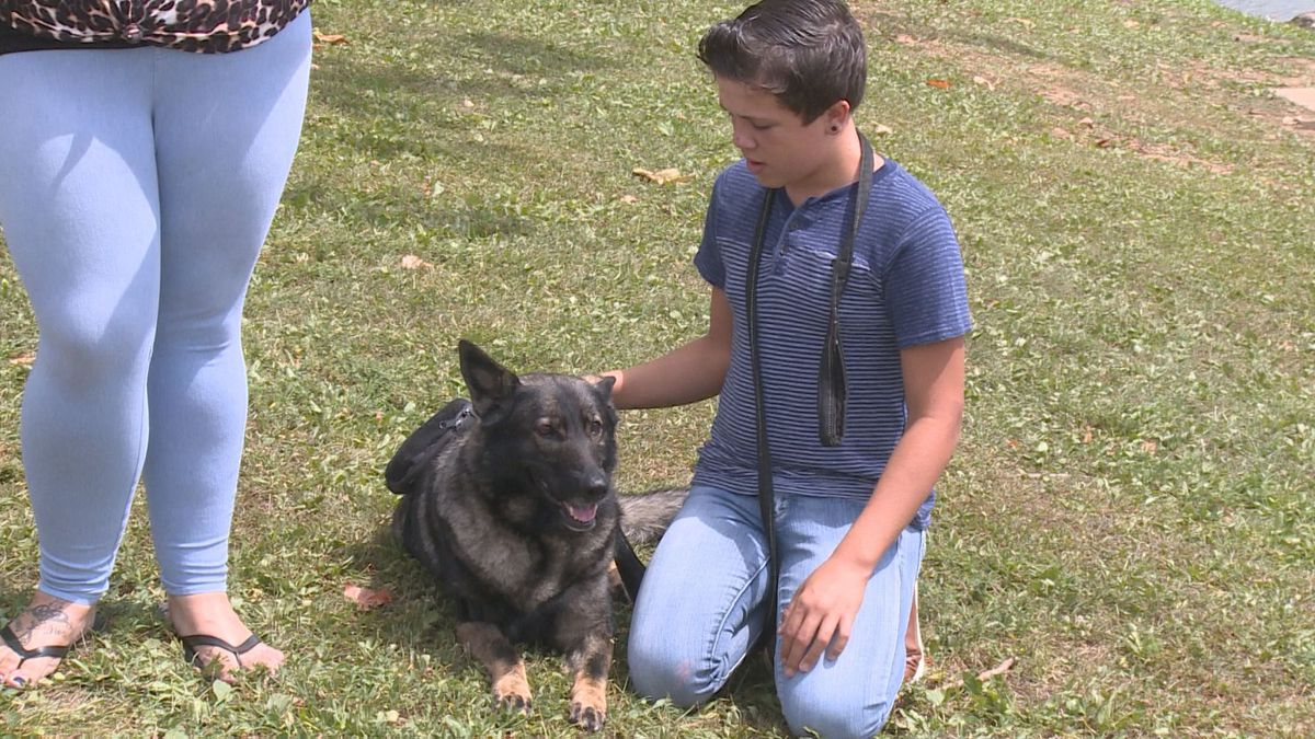 Alice is getting national recognition for its work with a Nicholasville boy who was paralyzed after being struck by gunfire. (Photo: WKYT)