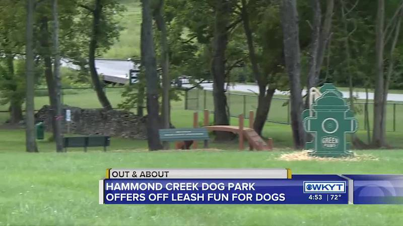 Out & About - Hammond Creek Dog Park